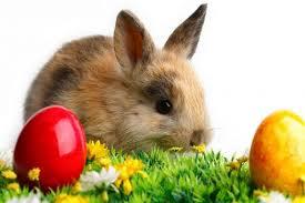 Húsvéti Pihenés a Hungarospa Thermal Hotelben Hajdúszoboszlón