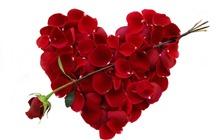 Valentin napi romantika az Aqua-Palace élményfürdőben!